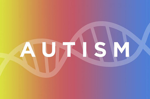 Scientists, led by a team at Washington University School of Medicine in St. Louis, have linked mutations in a single gene to autism in people with neurofibromatosis type 1. The findings may lead to a better understanding of the genetic roots of autism in the wider population. [Michael Worful]