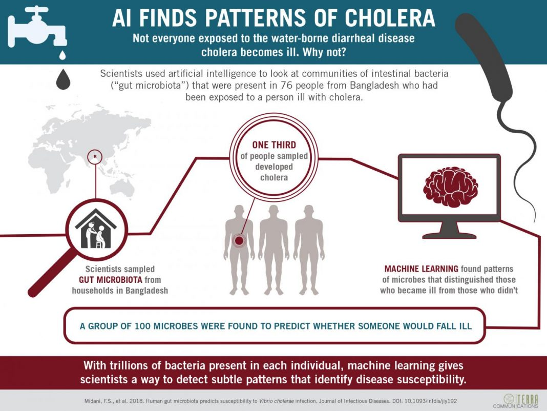To sort though thousands of different species of microbe living in the intestines of people exposed to cholera