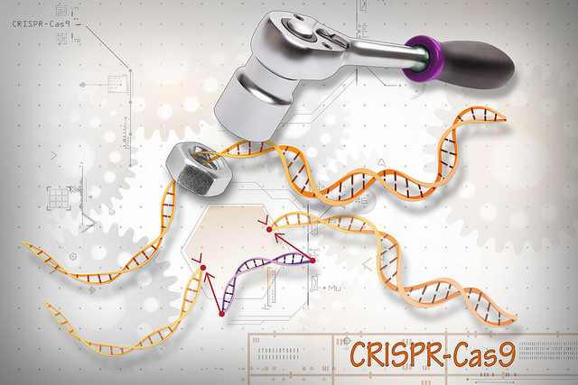 NIH Commits $190M to Somatic Gene-Editing Tools/Tech Research