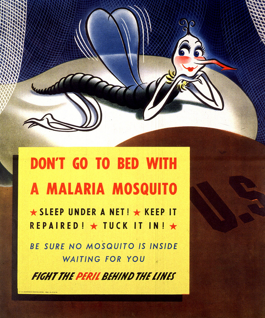 New research describes how scientists could harness the power of evolution to stop mosquitoes spreading malaria. [NIH]