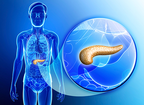 New research has shown that pancreatic cancer cells can be coaxed to revert back toward normal cells by introducing a protein called E47.