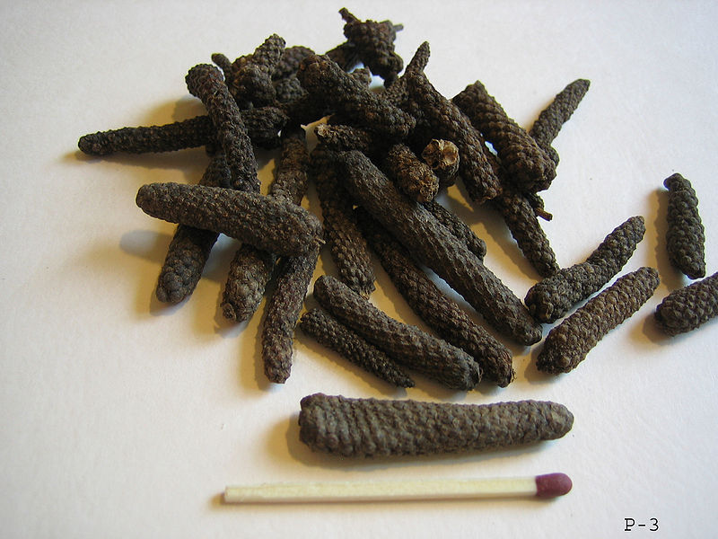 Dried Indian long pepper catkins. [WikiCommons]