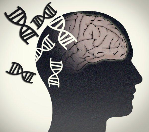 Results from a new study show the validity of using CSF as a medium for finding ctDNA to detect brain tumors. [Jonathan Bailey, NHGRI]