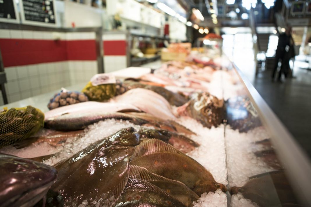 The link between higher consumption of fish and better long-term health for the brain has been long established. Now