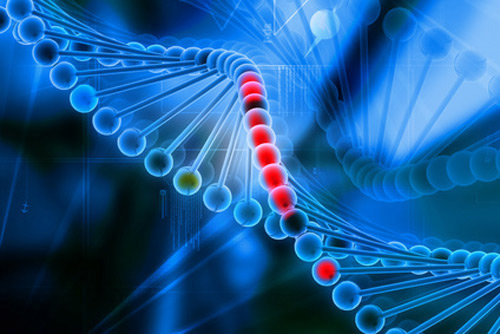 Check out the video below for our tribute to DNA Day! [© 4designersart - Fotolia.com]