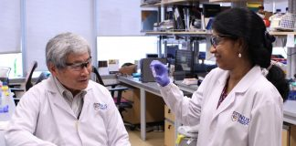 A research team from the Cancer Science Institute of Singapore has discovered that RUNX proteins play a part in the regulation of DNA repair. [National University of Singapore]