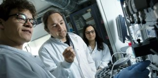 University of Copenhagen researchers have discovered a method of diagnosing a broad range of cancers at their early stages.