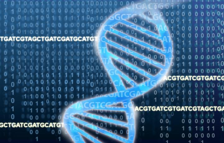 The DNA double helix rests on a field of ACGTs and binary numbers. [Jonathan Bailey/National Human Genome Research Institute]