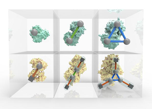 A new periodic table presents a systematic, ordered view of protein assembly, providing a visual tool for understanding biological function. [EMBL-EBI / Spencer Phillips]