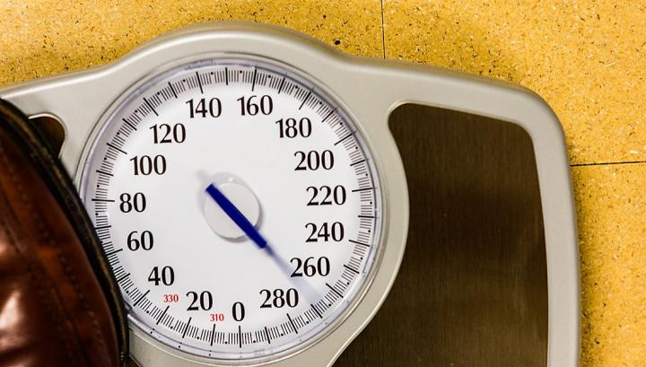 Diet success may depend on your DNA. [Texas A&M University Health Science Center]