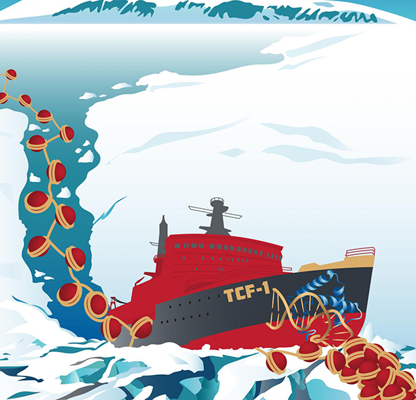 TCF-1 is like an icebreaker ship that initially opens the ice (condensed