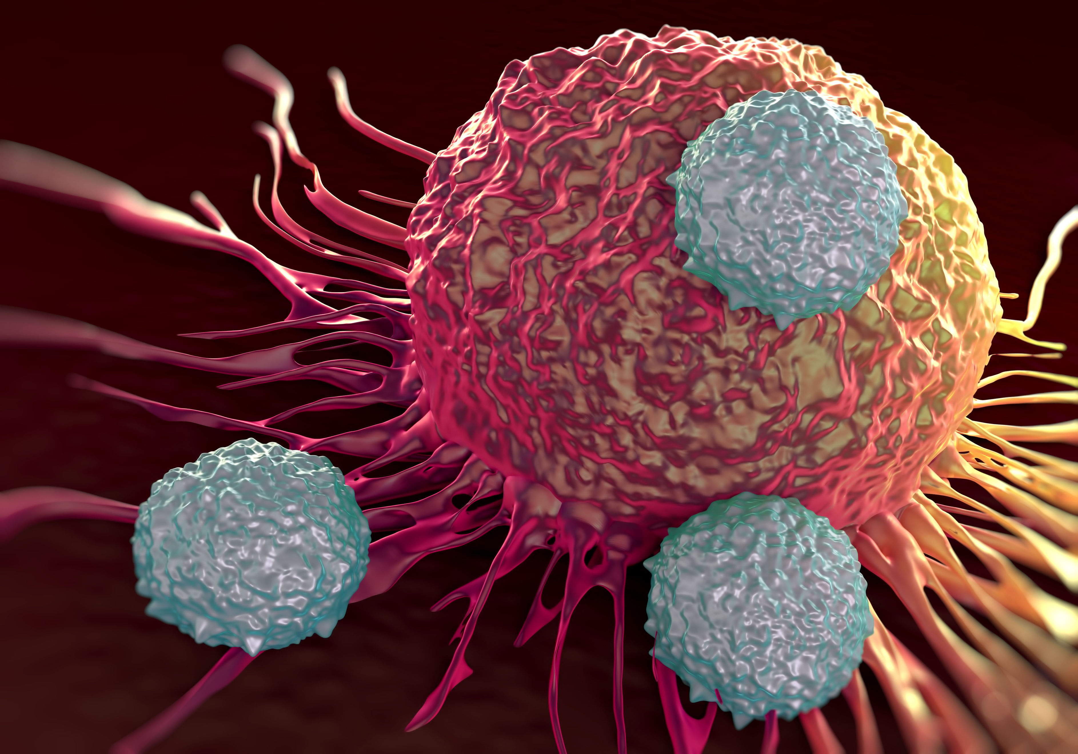 In a model of acute lymphoblastic leukemia, CAR T cells created with CRISPR outperformed those made with technology that relies on randomly integrating vectors. [royaltystockphoto/Getty Images]