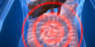 Salix Pharmaceuticals will partner with Cedars-Sinai Medical Center to discover new treatments for gastrointestinal (GI) disorders related to conditions of the gut microbiome. [Source: © Sebastian Kaulitzki/Fotolia]