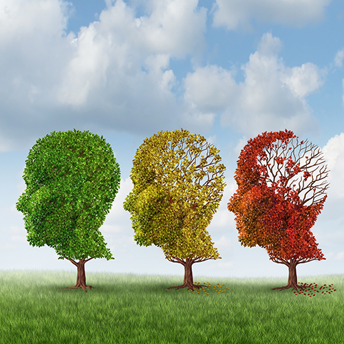 A novel mutation in rare dementia informs about Alzheimer's therapy