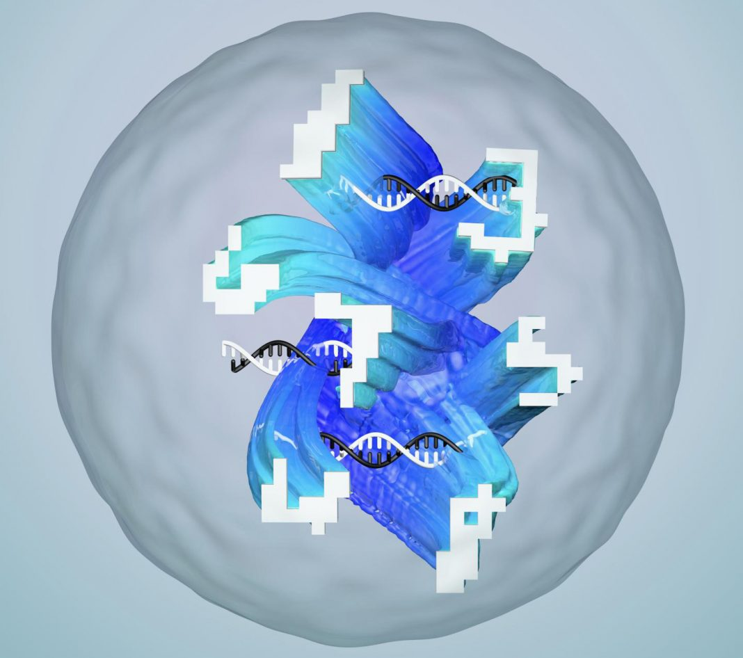Conceptual illustration of a droplet containing an artificial neural network made of DNA that has been designed to recognize complex and noisy molecular information