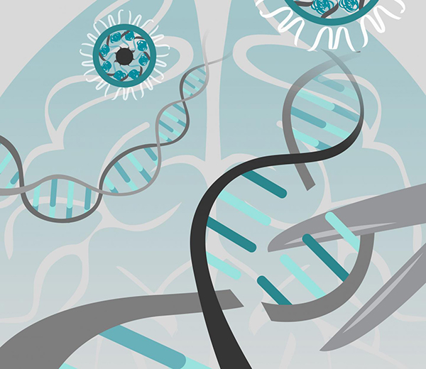 UT Health San Antonio scientists' used gene editing to cut DNA at a precise location to reduce autism symptoms in mice with fragile X syndrome. [University of California