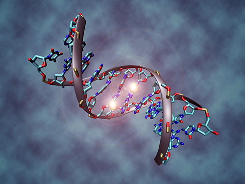 Investigators say that DNA methylation can provide effective markers for at least four major cancers. [Christoph Bock/Max Planck Institute for Informatics]