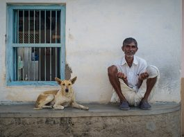 The genomes of village dogs from India