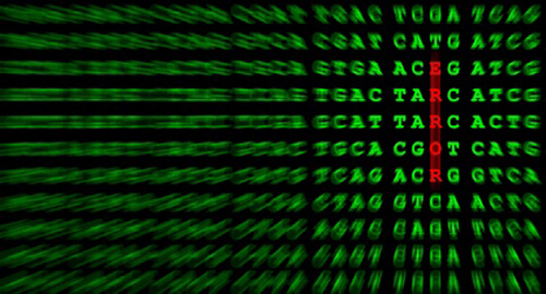 Initiative aims to provide clinicians with sequencing-based information for treatment decision making. [© Gernot Krautberger - Fotolia.com]