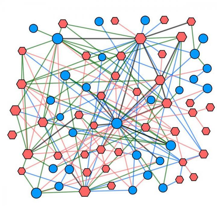 This is a network of synthetic-lethal interactions connecting commonly mutated genes to potential drug targets. [UC San Diego Health]