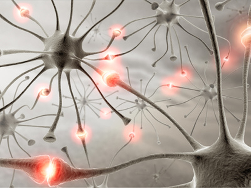Disease results from the degeneration of nerve tissue in the spinal cord