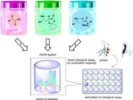 Pick and mix chemistry synthesizes cultures of potent bioactive peptides