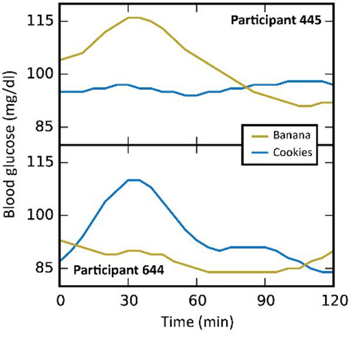The Personalized Nutrition Project found that study participants had strikingly different responses to identical foods. In participant 445 (top), blood sugar levels rose sharply after eating bananas but not after cookies of the same amount of calories. The opposite occurred in participant 644 (bottom). [Weizmann Institute of Science]