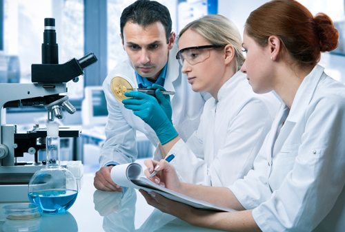 Researchers claim surface chemical modification supports long-term culture of undifferentiated cells.[© Alexander Raths - Fotolia.com]
