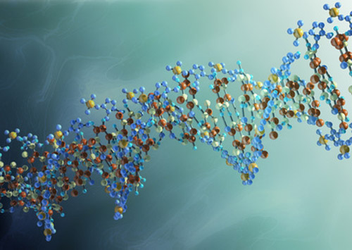 Technology developed by Biodesign Institute and Columbia University will be used alongside DNA transistor platform developed by IBM.[Andrzej - Fotolia.com]