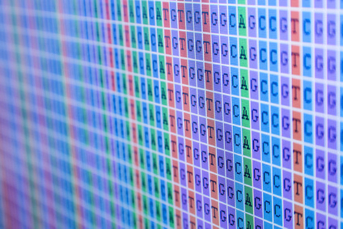 Investigators say results of five-year project will aid in the search for disease-related genetic variants.[© taraki - Fotolia.com]