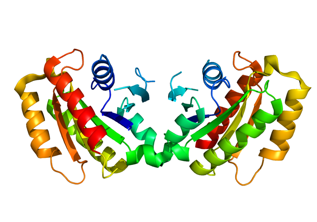 Mutations in LRRK2 are a common cause of genetic Parkinson's disease.
