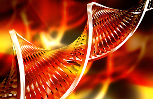 Researchers claim achievement has generated largest catalog of genetic data ever assembled. [Kirsty Pargeter/Fotolia.com]