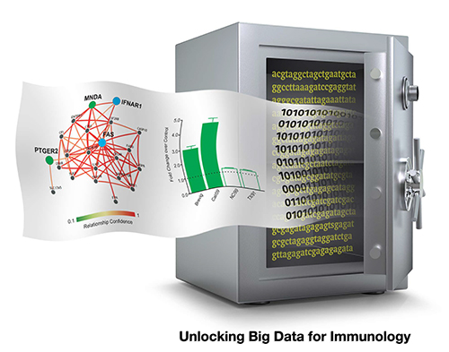 Big data scientists have developed a new online tool to better understand the immune system's role in combating disease. [Dmitry Zaslavsky and Stuart Sealfon]