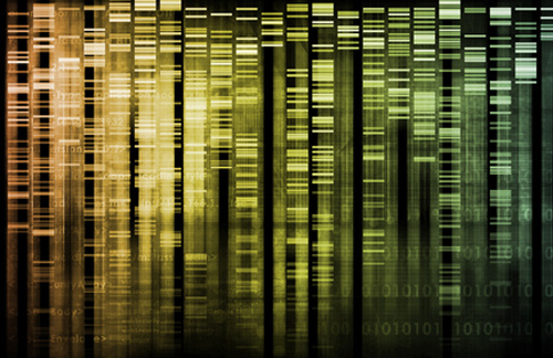 Agency will use decision-support tech to evaluate pharmacogenomic data submitted through VXDS program. [© kentoh - Fotolia.com]