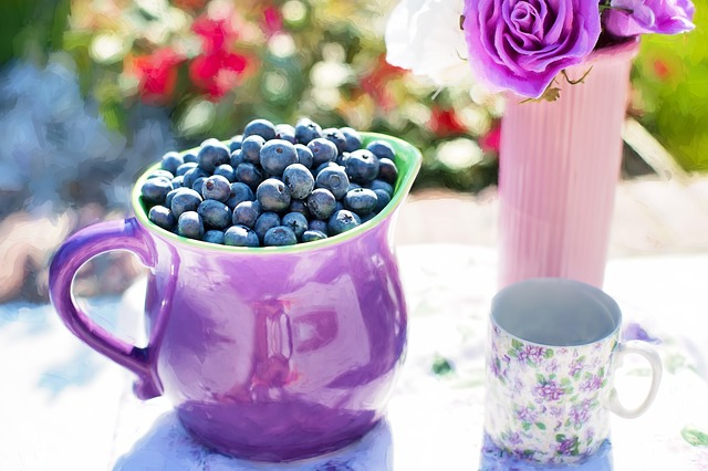 New study finds that drinking concentrated blueberry juice improves brain function in older people. [Pixabay]