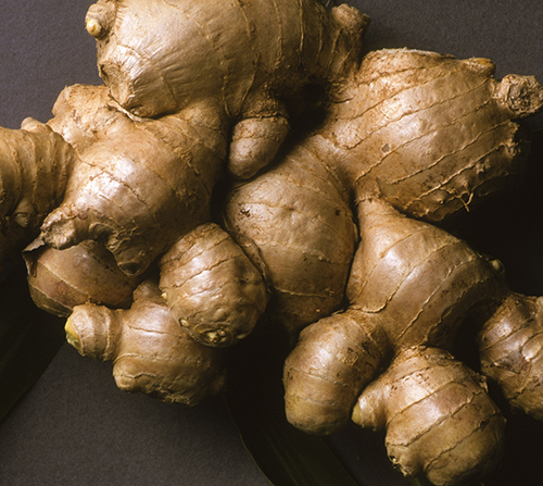 Researchers believe the ginger nanoparticles may be good medicine for Crohn's disease and ulcerative colitis, the two main forms of inflammatory bowel disease (IBD). [NIH]