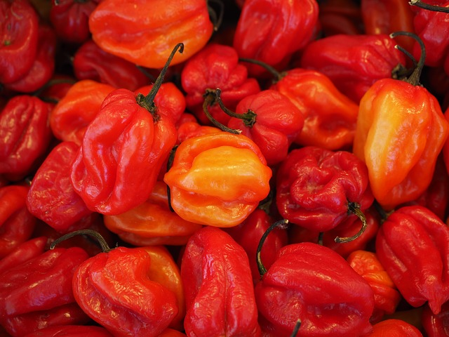 Researchers found that capsaicin, the active ingredient in spicy peppers, inhibits the growth of breast cancer cells. [Pixabay]