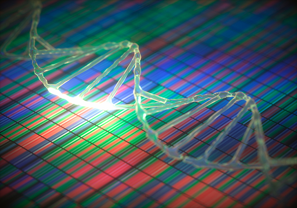 Top 10 Sequencing Companies Dna Mapping Service on