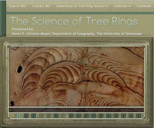 The Science Of Tree Rings Best Of The Web