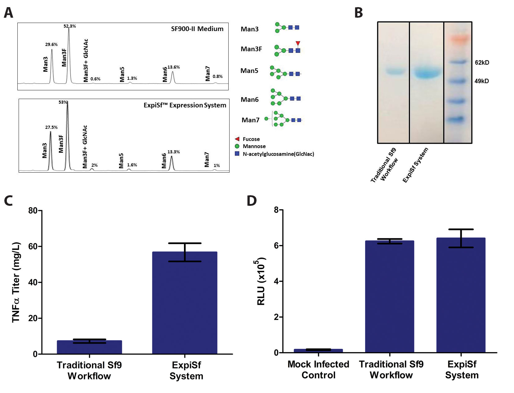 High-Titer Recombinant Protein Production