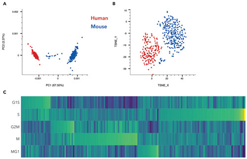 Diverse Approaches to Single-Cell Analysis
