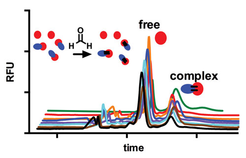 Snag-Free Combing of the Proteome