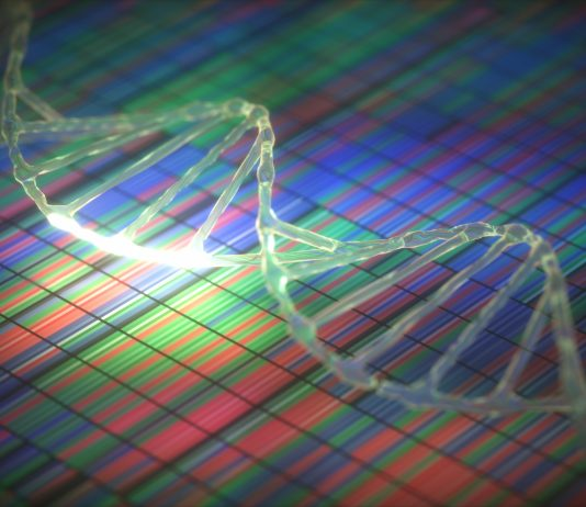 DNA sequencing and DNA strand