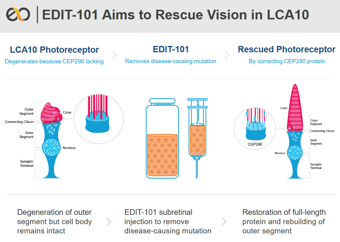 Editas Wins FDA Approval for IND of CRISPR Treatment for LCA10