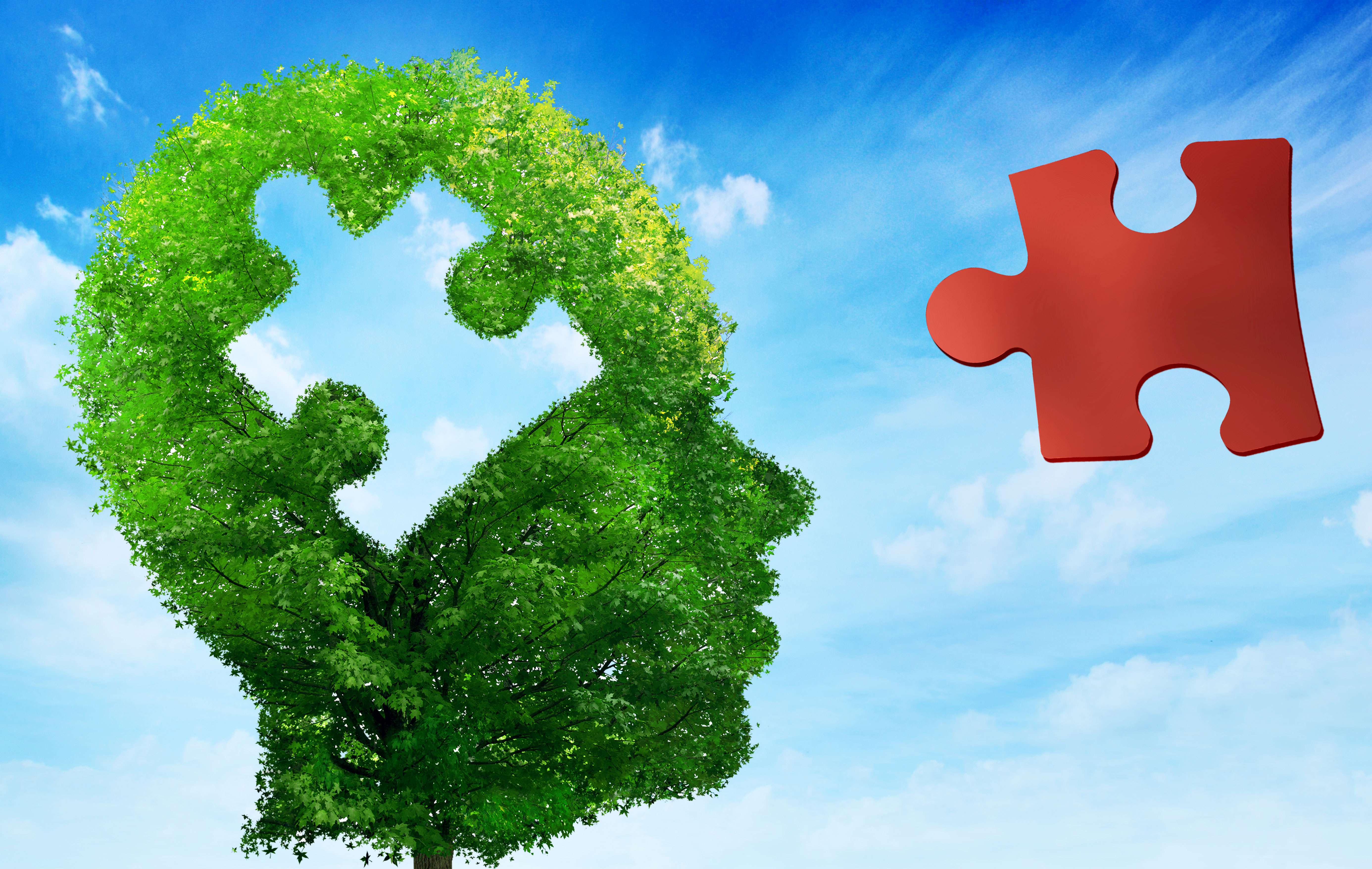 The Most Promising Areas Of Autism >> Plant Based Therapies For Autism Spectrum Disorders