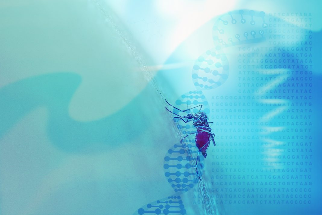 Abstract medical background with DNA helix, genetic code and mos