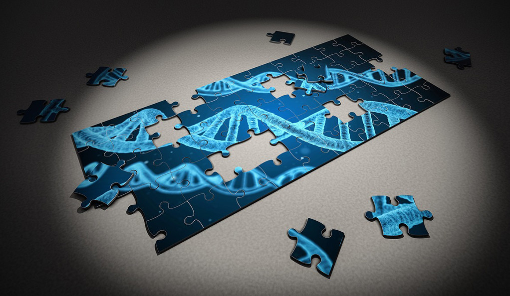 Autism Risk Genes Also Linked To Higher >> Autism S Common Risk Genes Identified