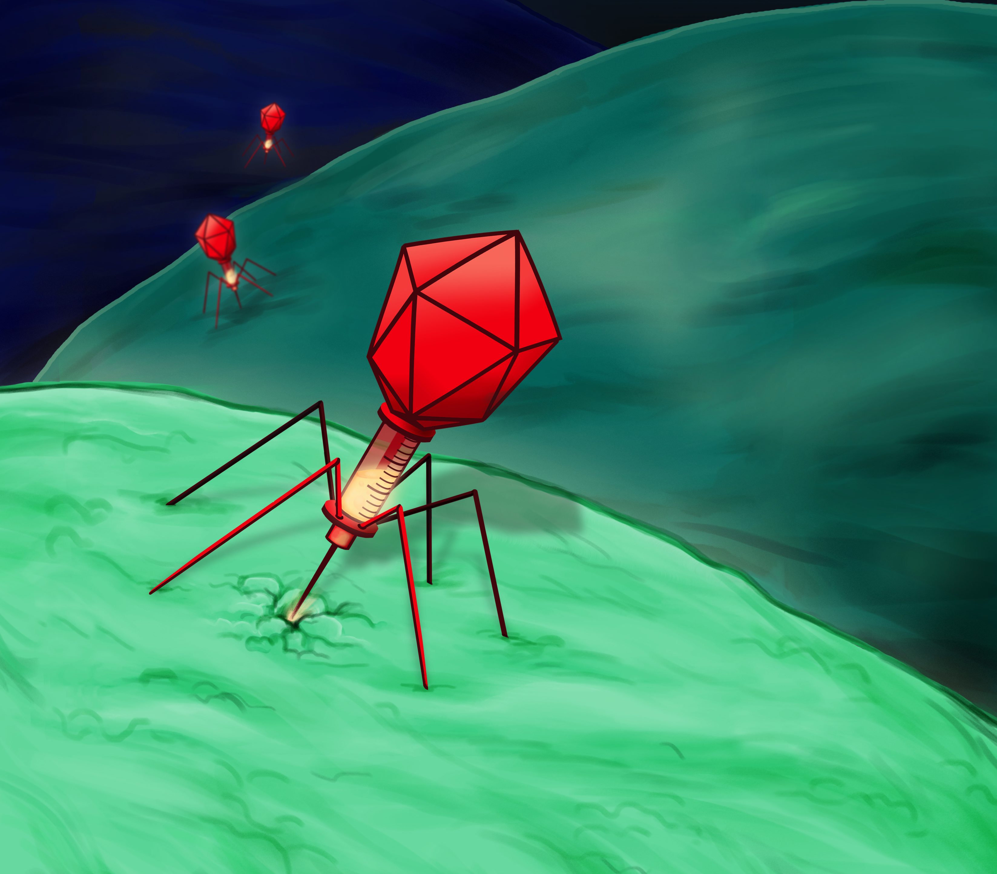 Phage Therapy: Turning the Tables on Bacteria