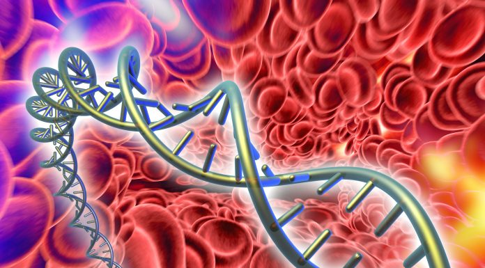 Computer artwork of DNA (deoxyribonucleic acid) molecule and red blood cells