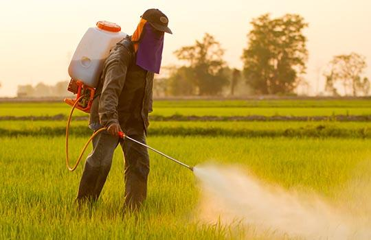 Pesticide Exposure In Pregnancy Linked >> Pesticide Exposure Linked With Autism In Epidemiological Study